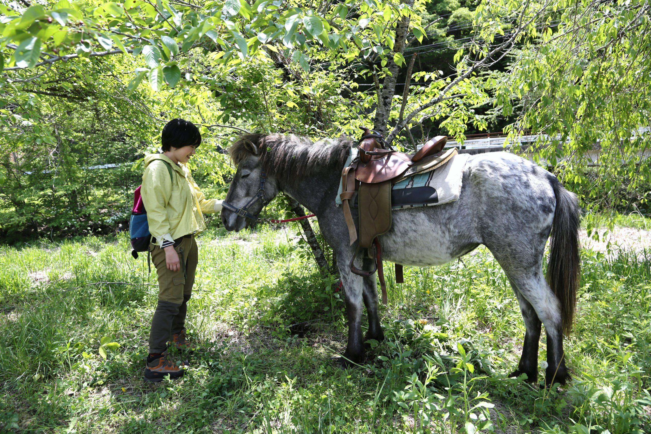 【終了】ホースセラピー講座「これでいいの? 子どもとの関わり方」 その答えは 馬が知っている! 9/25&26