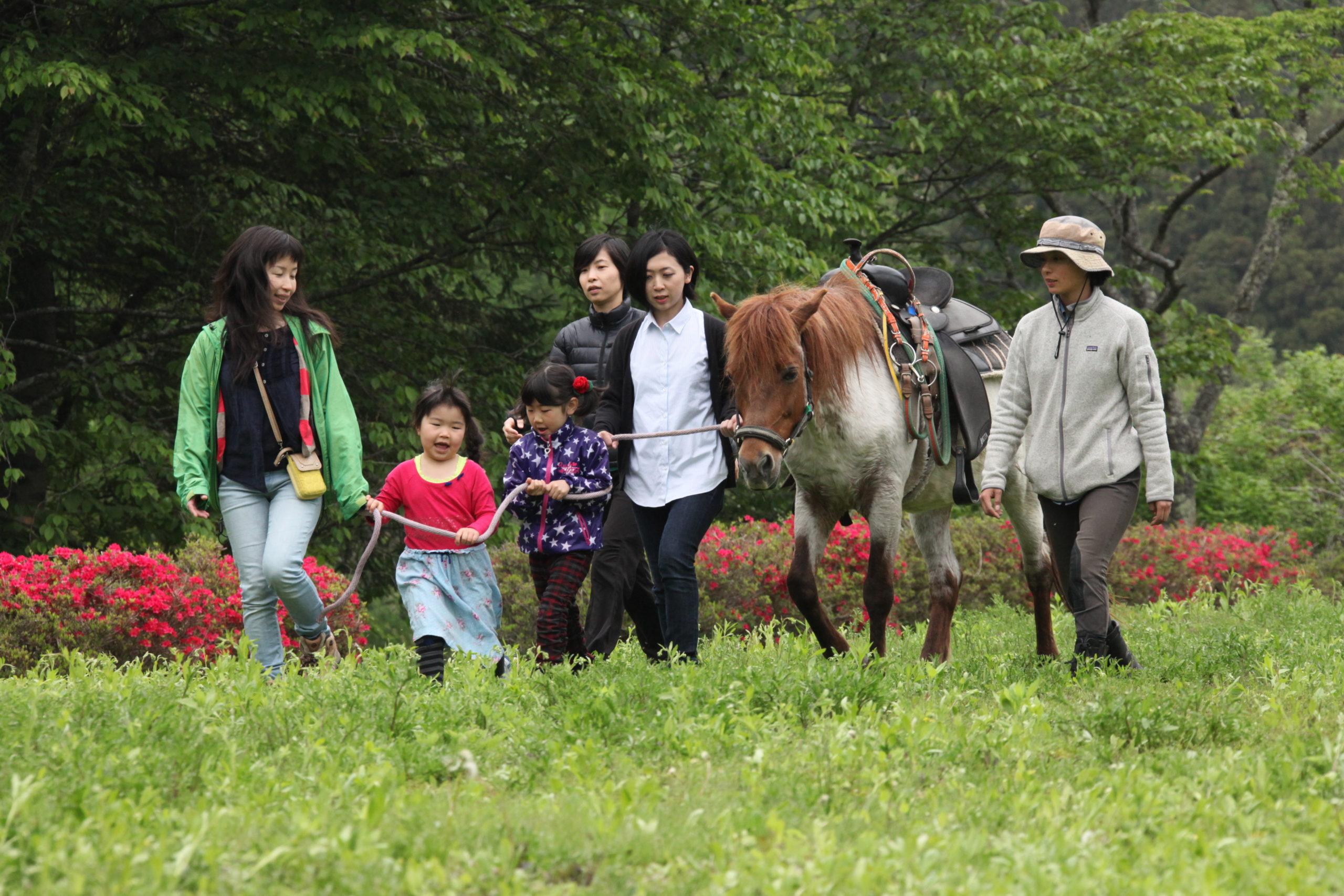 ホースセラピーとは〜「子ども中心」ではなく、「馬中心」だから本当に子どもが成長する!