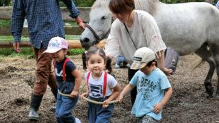 コラム〜馬との暮らし・子どもの育ち