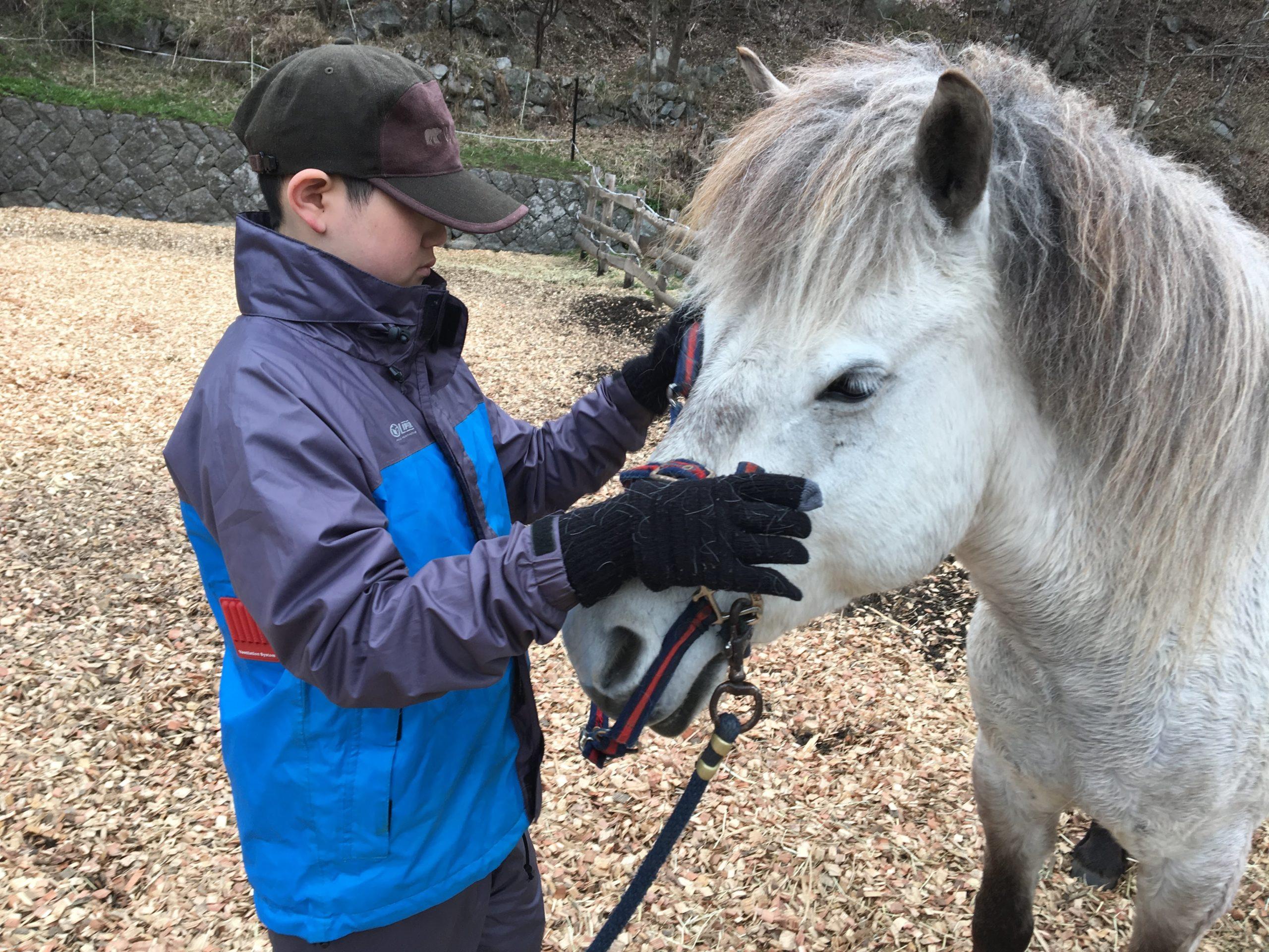 【終了】ホースセラピー講座「これでいいの?子どもとの関わり方」 その答えは 馬が知っている! 4/5(日)