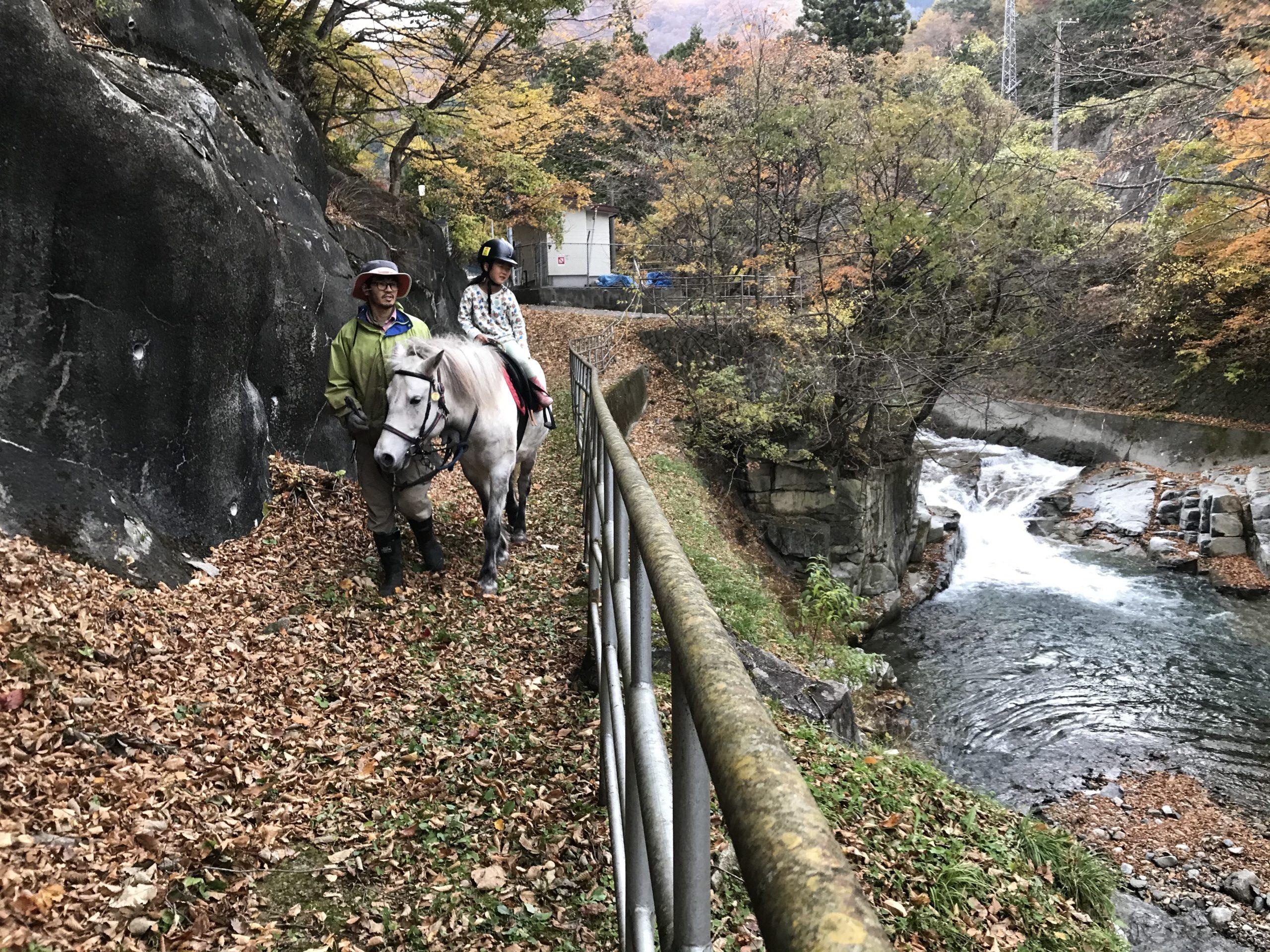 【終了】ホースセラピー講座「馬の暮らし型セラピー勉強会」 12/15(火)