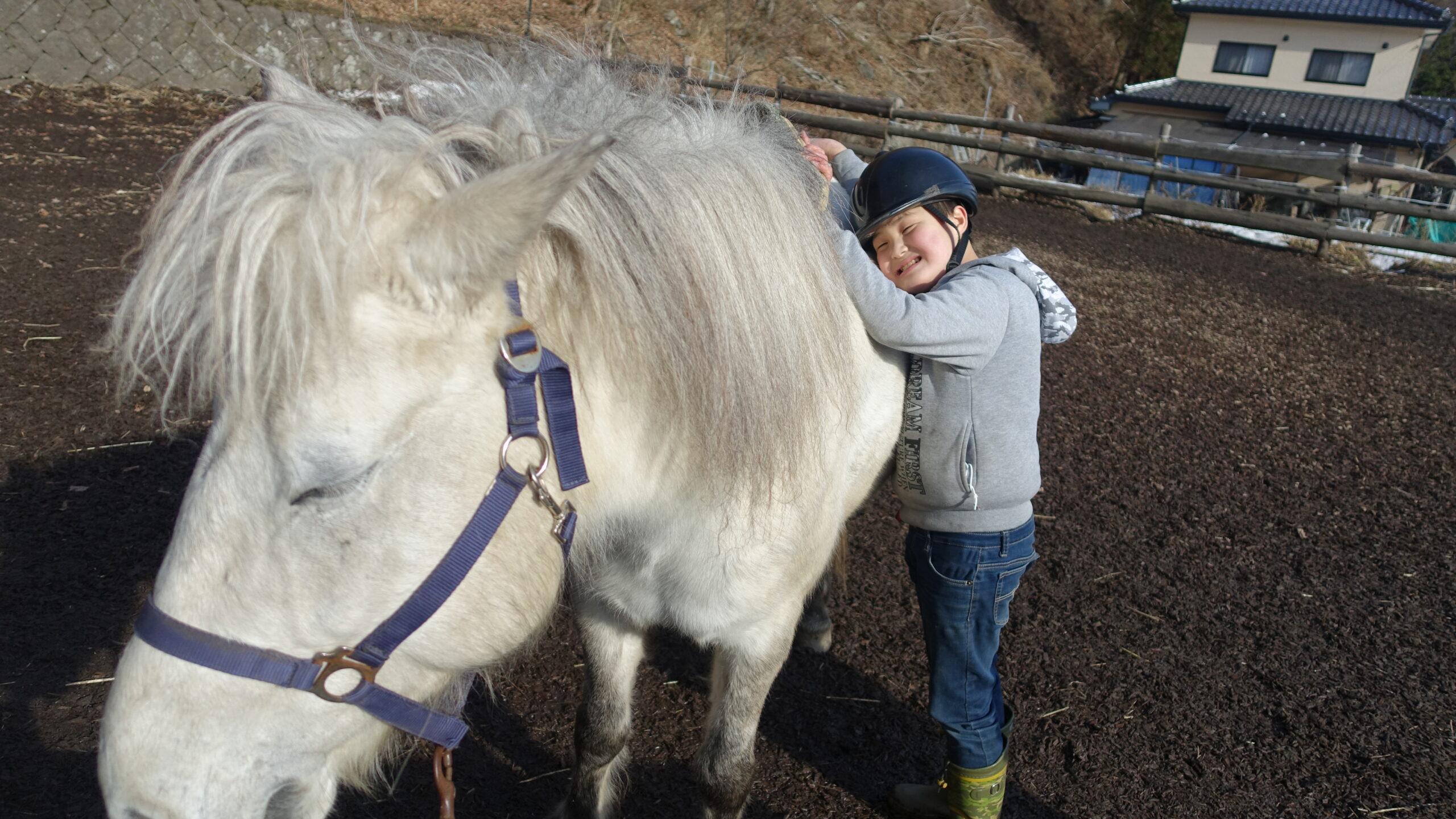 ホースセラピー講座「馬の暮らし型セラピー勉強会#12」6/24(終了→次回、夏予定)